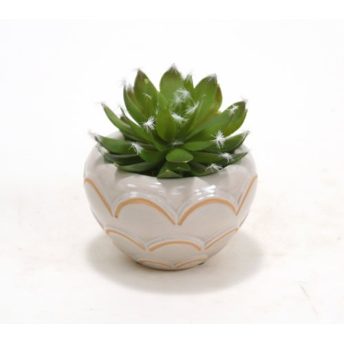 Distinctive Designs Hen and Chicken Desk Top Plant in Pot (Set of 3)