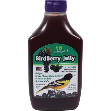 Songbird Essentials/Gold Crest SE6010 Bird Jelly, Berry, 20-oz. - Quantity 1 - Purple Jelly