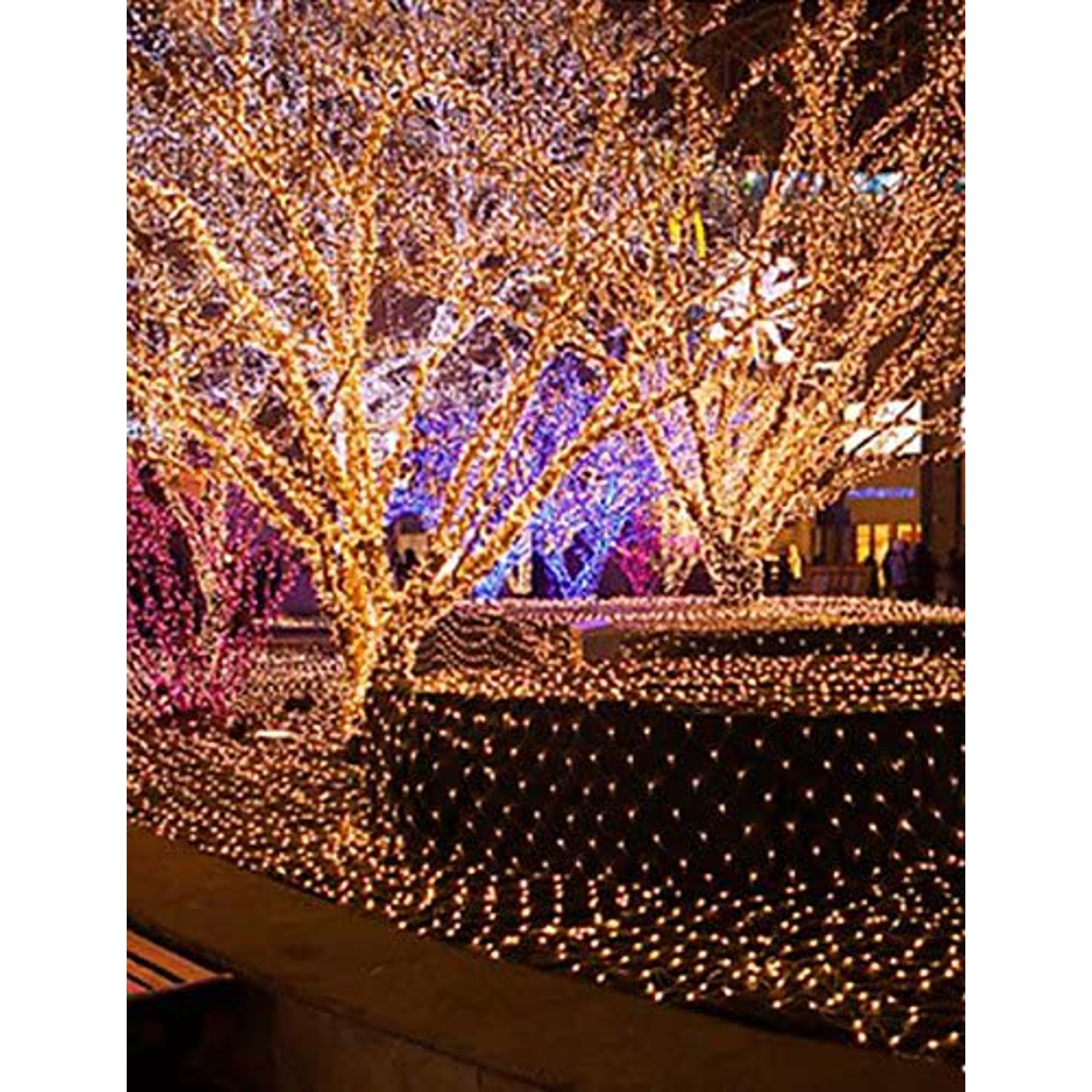 Christmas Net Light Waterproof Nets Bars Wedding Twinkle Waterfall Decoration Lamps Waterproof Light 3 2m 204led White Walmart Canada