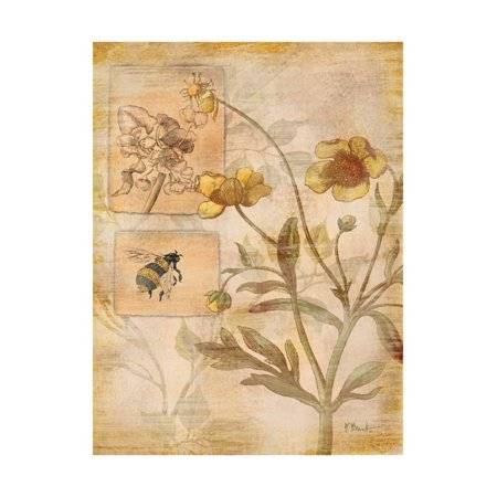 Flora Bumble Bee Print Wall Art By Paul Brent