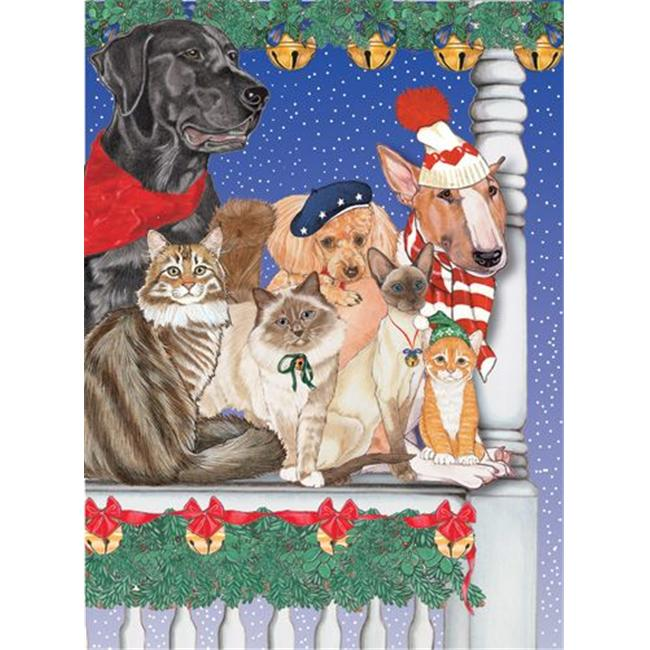 Pipsqueak Productions C875 Mix Dog With Cat Holiday Boxed Cards