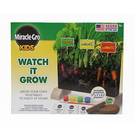 Miracle Gro Kids Watch It Grow