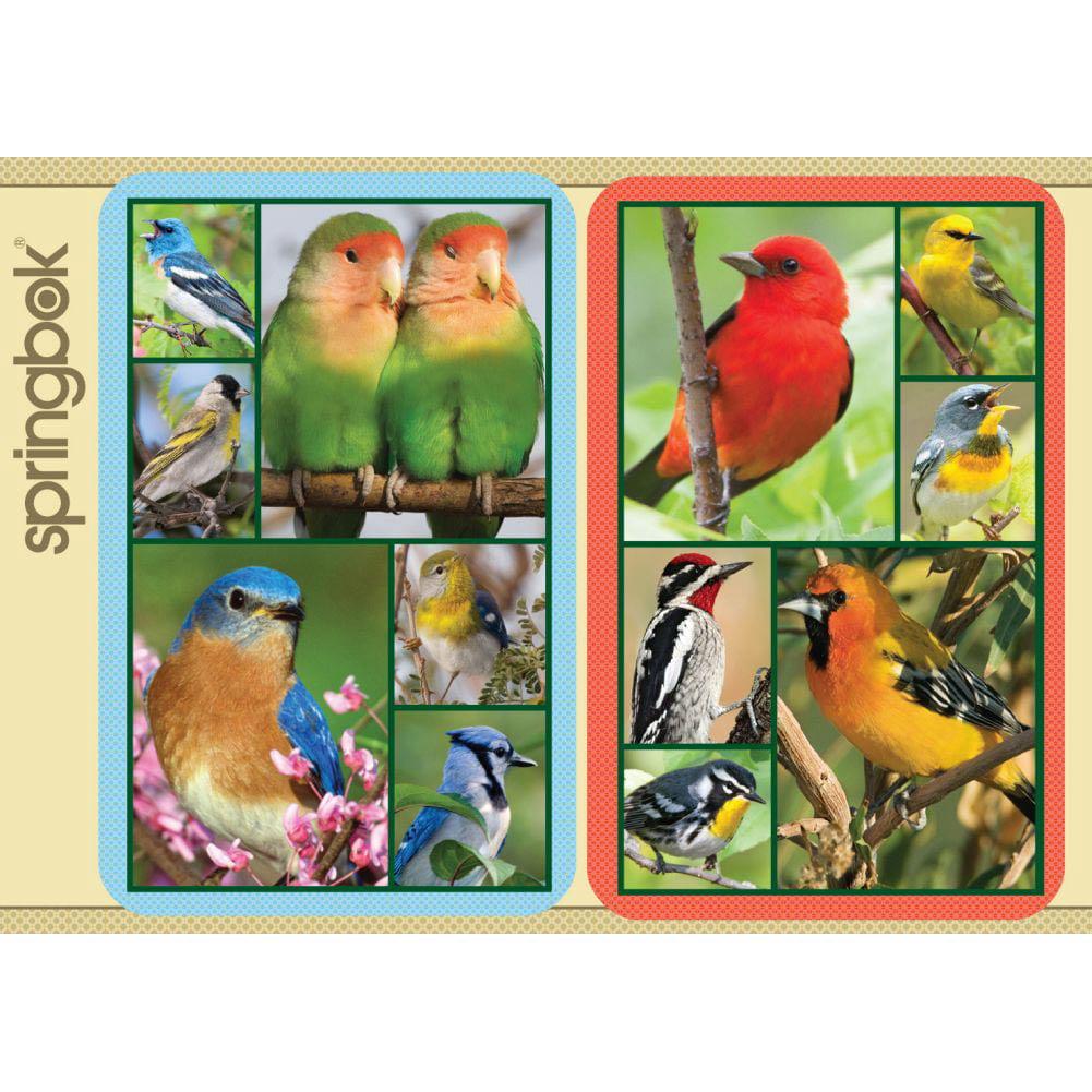 Springbok Songbirds Bridge Playing Cards Jumbo Print Index by Generic