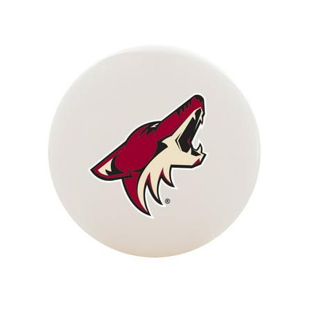 Franklin Sports NHL Arizona Coyotes Street Hockey Ball