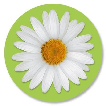Daisy Envelope Seals - Set of 24 (1 design) sticker seals on 8-1/2