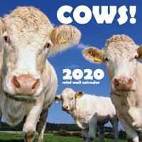 Cows! 2020 Mini Wall Calendar (Paperback)