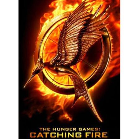 Catching Fire - Gravity Feed Booster Pack (Case - 24 Packs) New