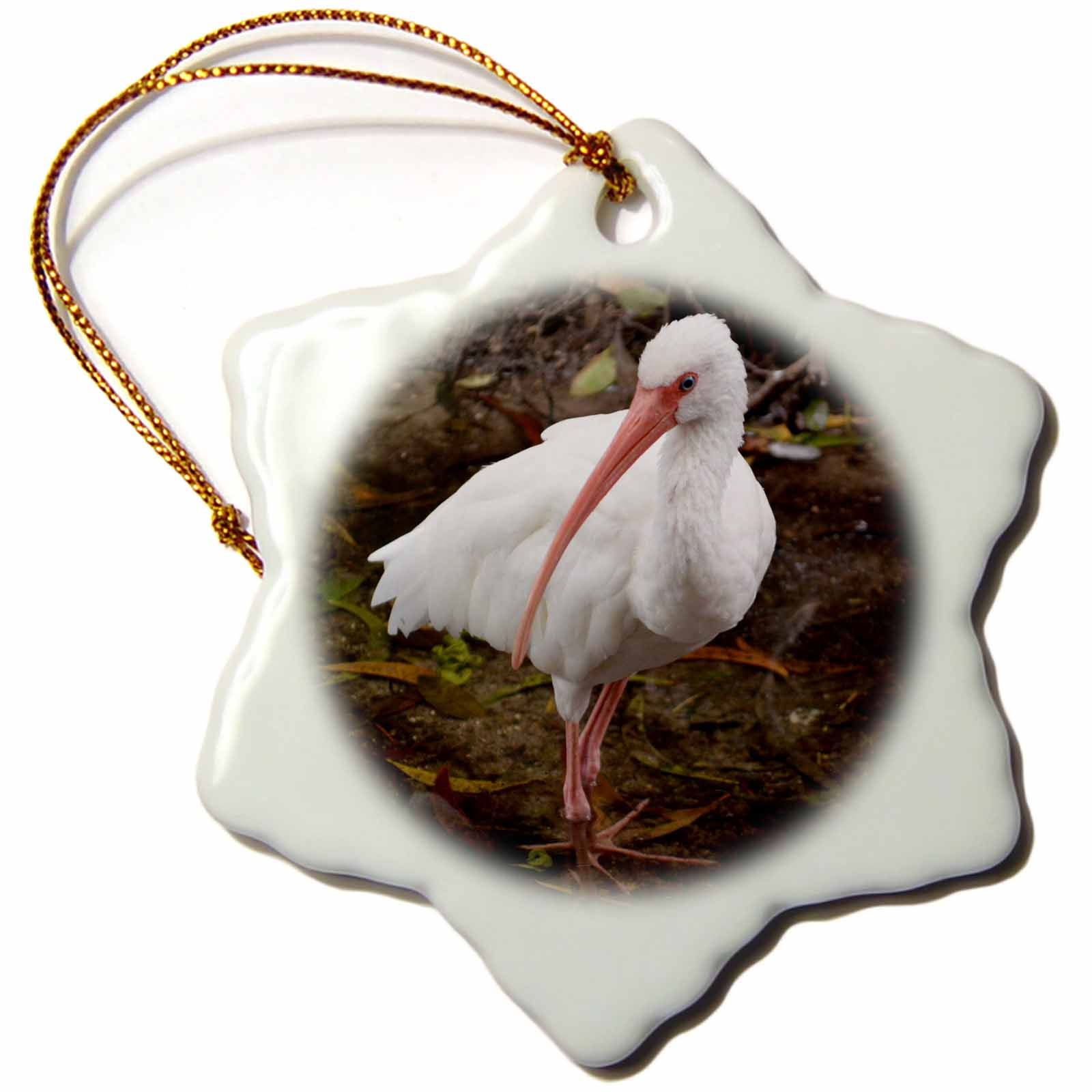 3dRose white ibis in water eying the camera, Snowflake Ornament, Porcelain, 3-inch