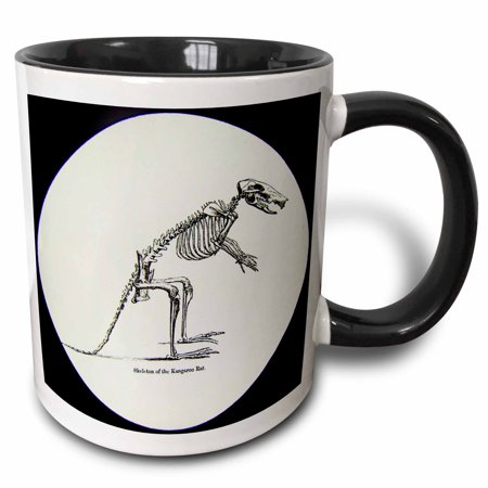 3dRose Vintage Scientific Study Magic Lantern Slide Skeleton of Kangaroo Rat - Two Tone Black Mug, 11-ounce