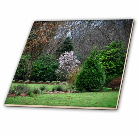 3dRose Spring Beginning to Awaken is a photo of the botanical gardens