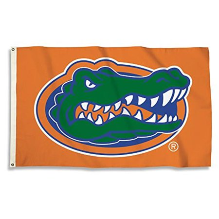 NCAA Florida Gators Flag with Grommets - 3 x 5 ft. - image 1 de 1