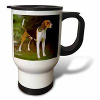 3dRose American Foxhound - Travel Mug, 14-ounce, Stainless Steel