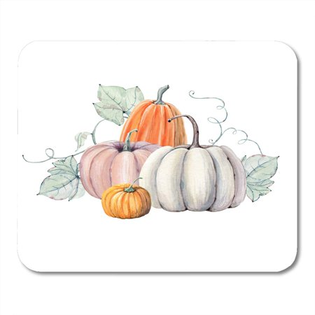 KDAGR Green Fall Pumpkins Watercolor Painting on Colored Vegetables Autumn Halloween Mousepad Mouse Pad Mouse Mat 9x10 inch](Painting Halloween Pumpkins Games)