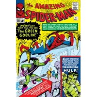 Amazing Spider-Man No.14 Cover: Spider-Man, Green Goblin and Hulk Print Wall Art By Steve Ditko