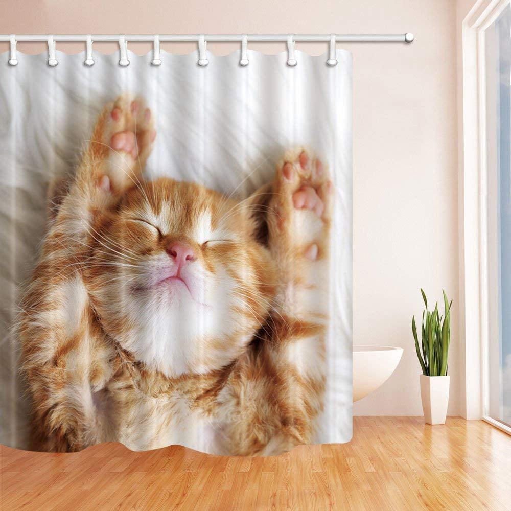 WOPOP Cat Decor A Lovely Sleeping Cat Polyester Fabric