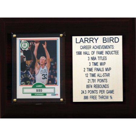 C&I Collectables NBA 6x8 Larry Bird Boston Celtics Career Stat