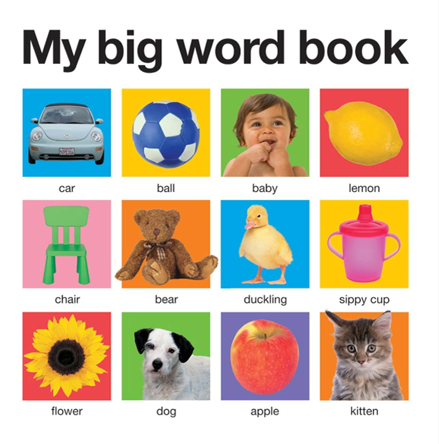 My Big Word Book (Board Book)