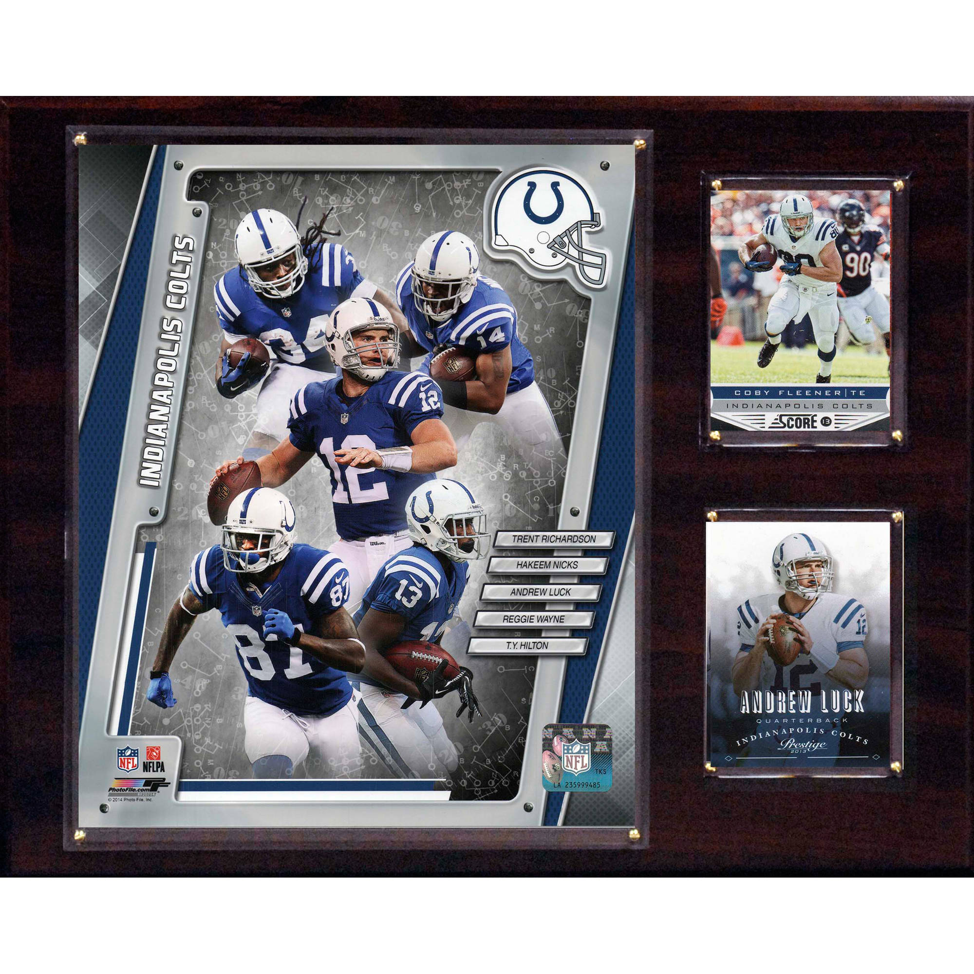 C&I Collectables NFL 12x15 Indianapolis Colts 2014 Team Plaque