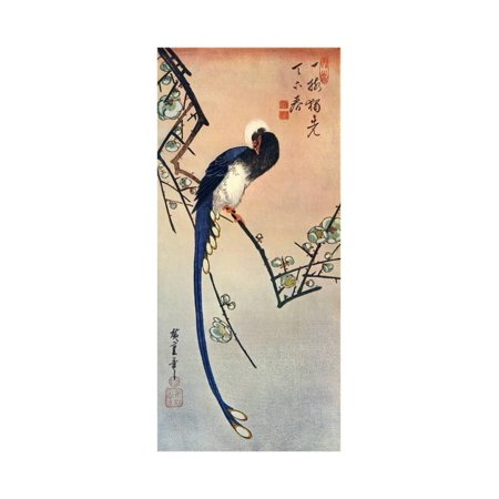Long Tailed Blue Bird on Branch of Plum Tree in Blossom, 19th Century Print Wall Art By Ando Hiroshige
