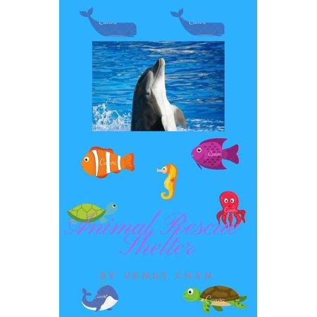 Animal Rescue Shelter - eBook