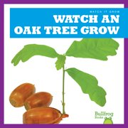 Watch an Oak Tree Grow
