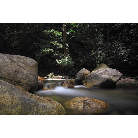 Canvas Print Nature Daylight Leaves Fall Boulder Landscape Stretched Canvas 10 x 14