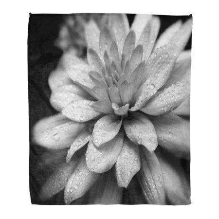 ASHLEIGH Throw Blanket Warm Cozy Print Flannel Lotus Black and White Flower Nature Closeup Comfortable Soft for Bed Sofa and Couch 50x60 Inches - Lotus Flower Bead