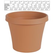 "Bloem Terra Pot Planter 4"" Terra Cotta"