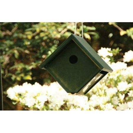 Songbird Essentials SERUBWH105 Recycled Plastic Wren House Hunter/Ivory Cedar Wren House Kit
