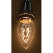 Wing Tai Trading 40W Tan Glass 130-Volt Light Bulb