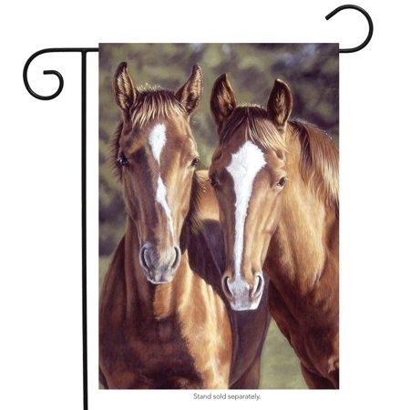 tango & cash horses garden flag everyday meadow 12.5