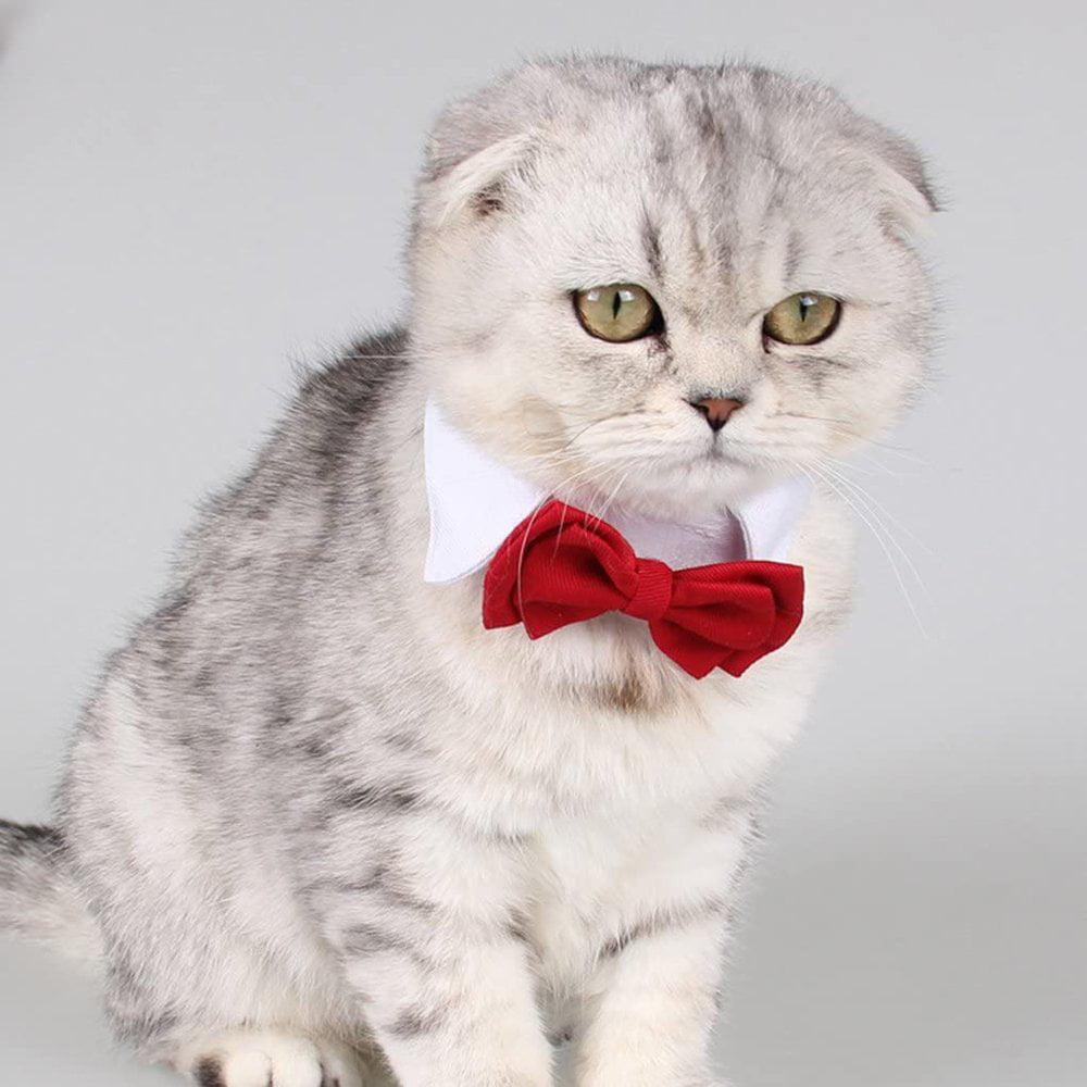 Pet Bow Tie Fashion Cute Bowknot Cat Dog Puppy Clothes Necktie Pet Supplies Walmart Canada