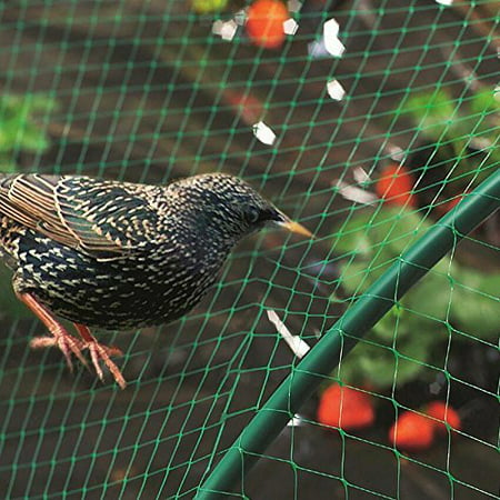 Garosa La maille d'escrime de fruits de plante de jardin de filet de filet vert d'anti protègent des fruits des oiseaux de rongeurs - image 6 de 6