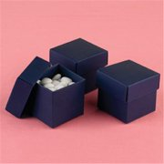 Hortense B Hewitt 90210P Navy 2 piece Favor Boxes - Personalized
