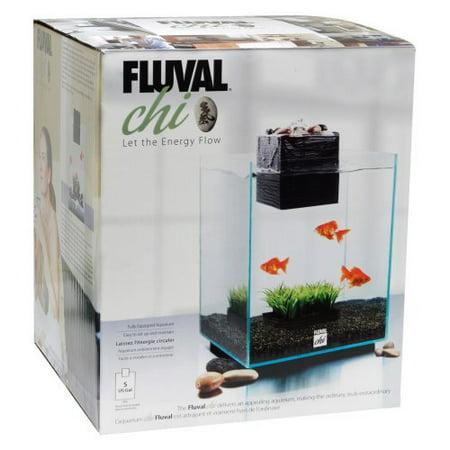 Fluval chi aquarium kit 5 gallon for 5 gallon fish tank heater