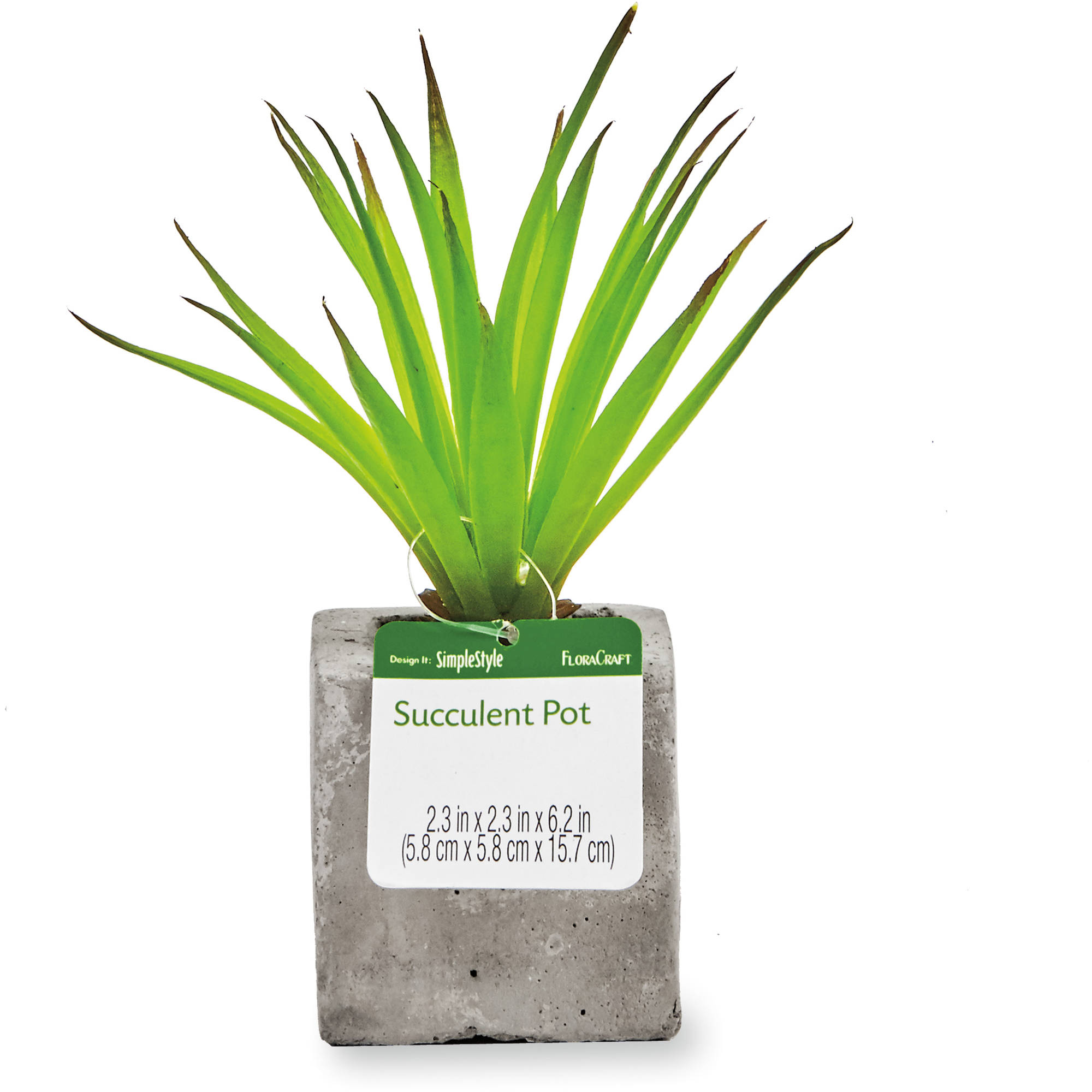 Design It Succulent Square Cement Pot