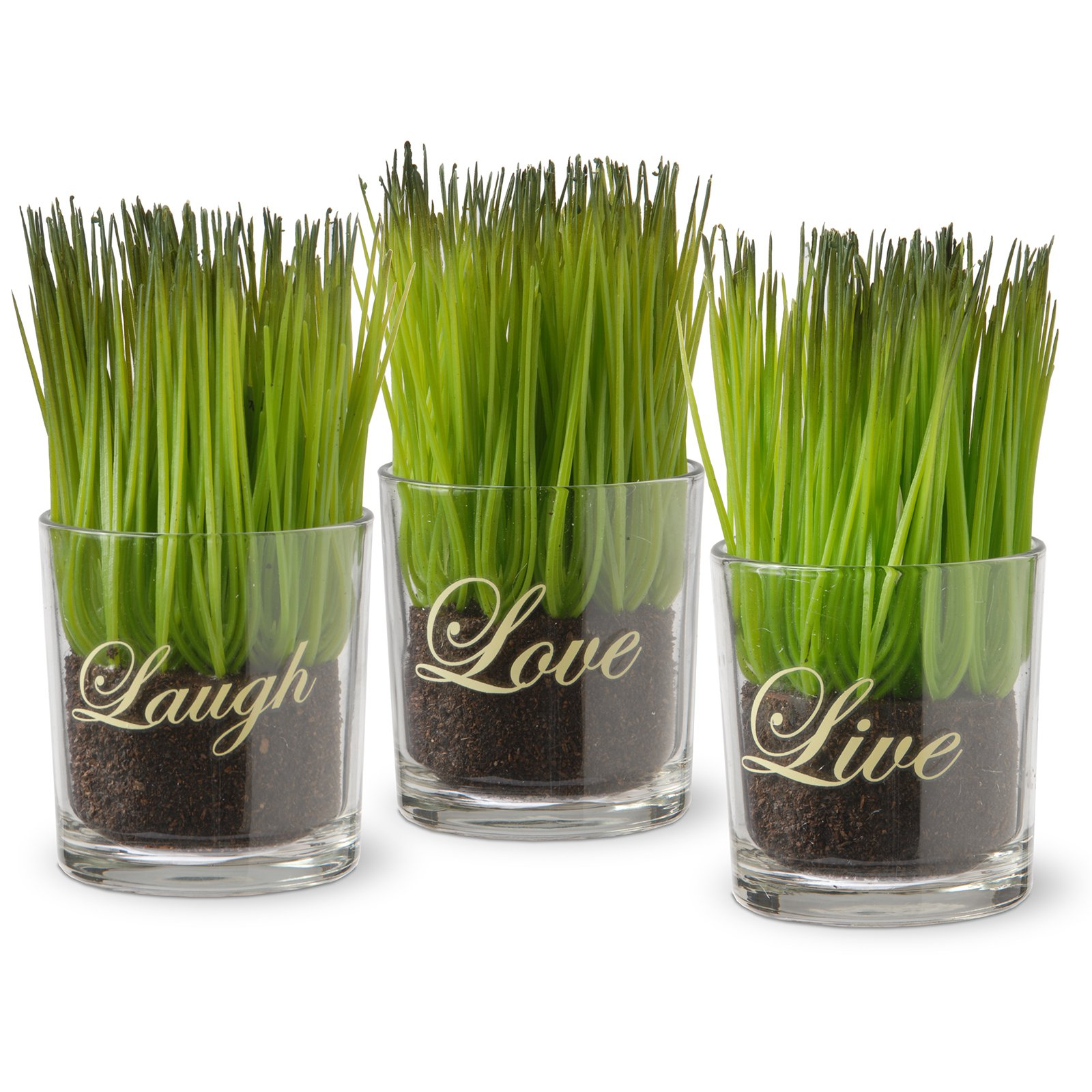 3-Piece Sprout-Filled Glass Assortment