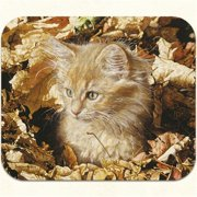 Fiddlers Elbow m317 Ambers st Autumn Mouse Pad, Pack Of 2