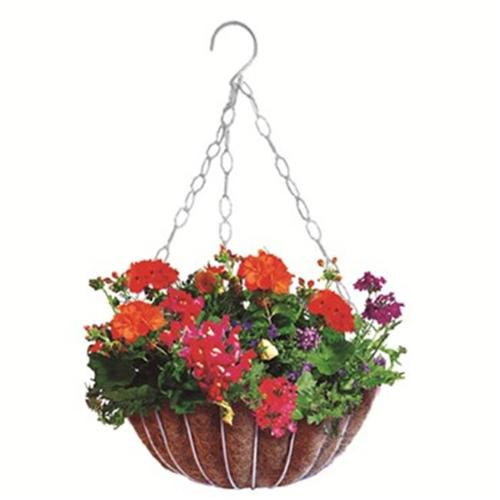 Austram-Griffith Creek Designs 31709 12 inch Hyde Park Hanging Planter Green