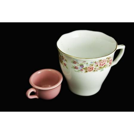 Canvas Print China Tea Cup Miniature Porcelain Roses Pink Cup Stretched Canvas 10 x 14 Fine Porcelain Miniature