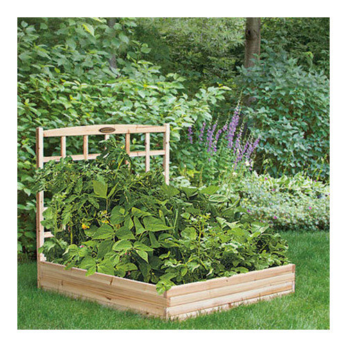 Suncast Cedar Raised Garden Bed with Trellis