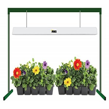 iPower GLT5XX4 Head Start T5 54W 6400K Fluorescent Grow Light System with Stand Rack for Seed Plant Starting, 4-Feet, Premium-Quality UL/CSA-listed Super Sun Grow Light System