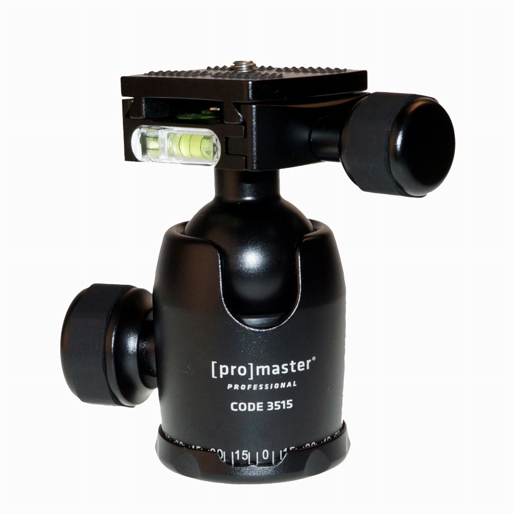 ProMaster Professional Ball Head - BS-18