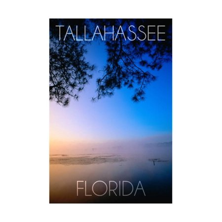 Tallahassee, Florida - Lake Lafayette Print Wall Art By Lantern Press - Party City In Tallahassee Florida