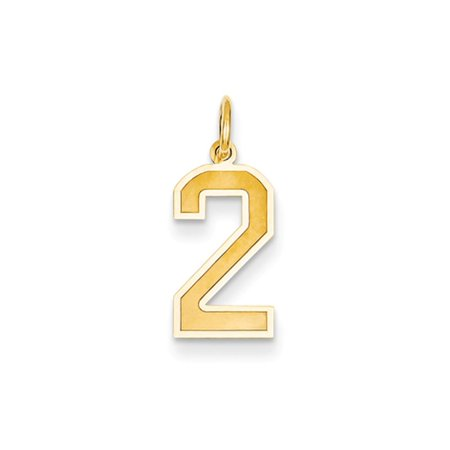 14k Gold Medium Satin Number 2 Charm - Measures 19.9x8.5mm - Number Charms