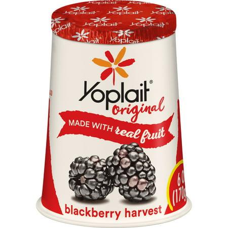 Yoplait Original Yogurt Blackberry Harvest, 6 oz Cup ...