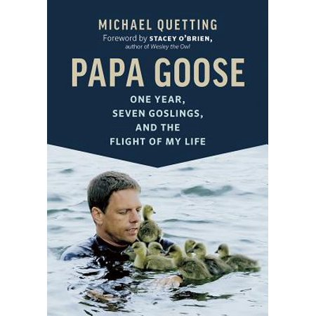 One Year Life - Papa Goose : One Year, Seven Goslings, and the Flight of My Life