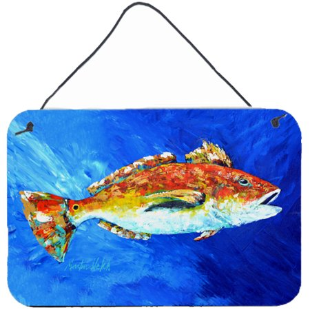 Red fish white spin wall or door hanging prints for Whiting fish at walmart