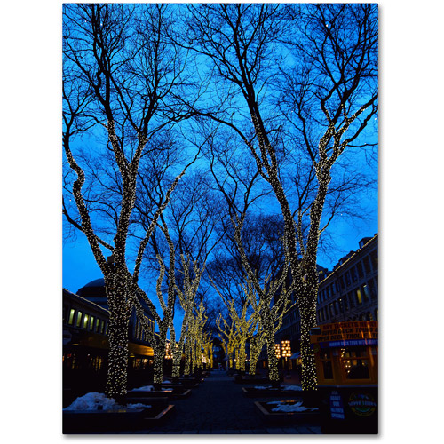 "Trademark Fine Art ""Boston 2"" Canvas Art by CATeyes"