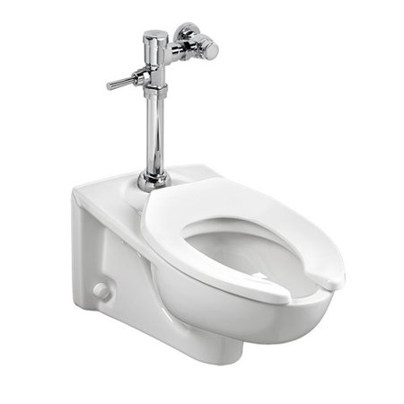 American Standard Afwall Millennium Flowise Dual Flush Elongated One-Piece Toilet American Standard Afwall Wall